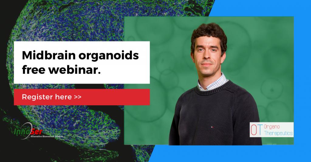 Midbrain Organoids webinar