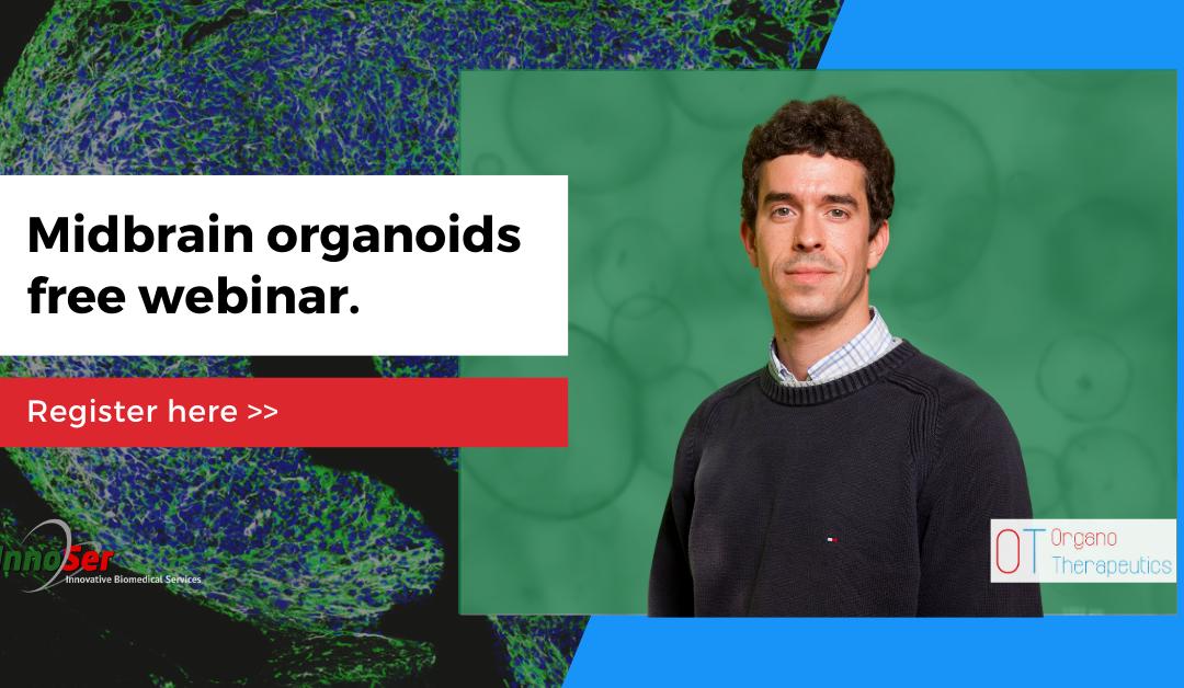 Midbrain Organoids Free Webinar With Javier Jarazo