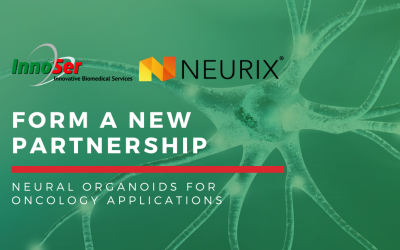 Press Release: InnoSer and Neurix form a partnership to offer neural organoids for oncology drug development applications