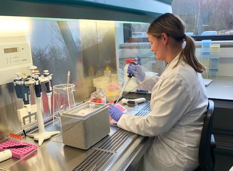 Sarah in vitro lab