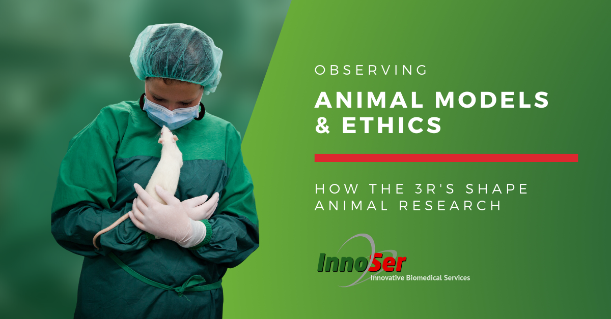 3R's in animal research blog